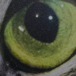 Fotoobraz Malina detail